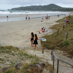 coastal management byron bay Coastal tourism development:  management of coastal tourism  112 interactions of institutional stakeholders in the byron bay policy and planning system.