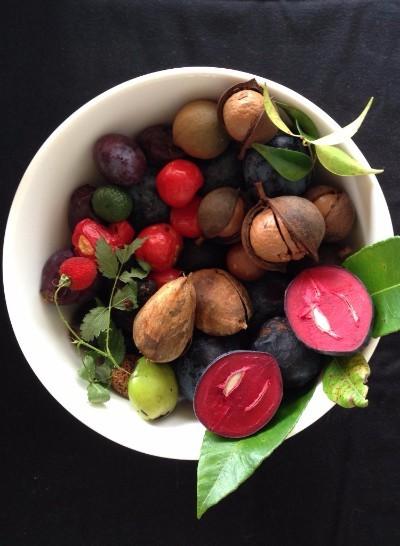 NRF Native foods