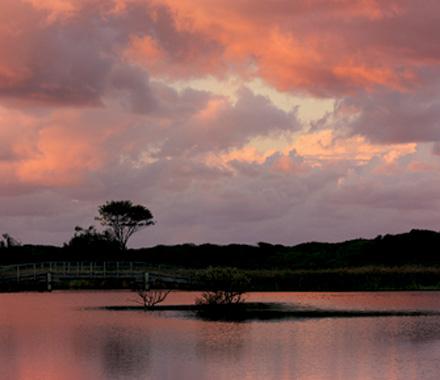 Lake at Suffolk Park