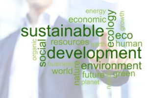Sustainability in the business of food