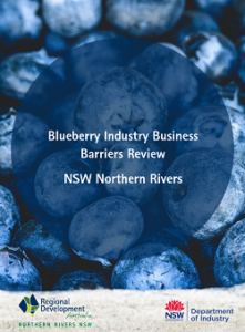 Northern Rivers Blueberry Industry report